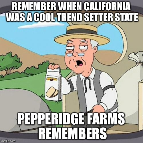Pepperidge Farm Remembers Meme | REMEMBER WHEN CALIFORNIA WAS A COOL TREND SETTER STATE PEPPERIDGE FARMS REMEMBERS | image tagged in memes,pepperidge farm remembers | made w/ Imgflip meme maker