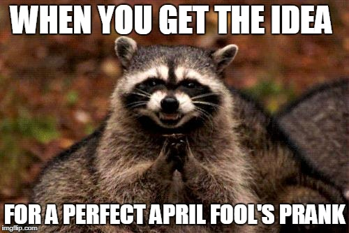 Evil Plotting Raccoon Meme | WHEN YOU GET THE IDEA FOR A PERFECT APRIL FOOL'S PRANK | image tagged in memes,evil plotting raccoon | made w/ Imgflip meme maker