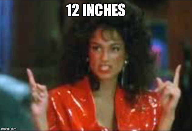 12 Inches  | 12 INCHES | image tagged in inches,sucka,12 inches | made w/ Imgflip meme maker