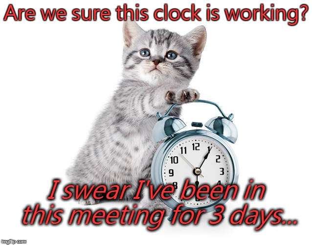 Are we sure this clock is working? I swear I've been in this meeting for 3 days... | image tagged in kitty with alarm clock | made w/ Imgflip meme maker