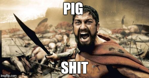 Sparta Leonidas Meme | PIG SHIT | image tagged in memes,sparta leonidas | made w/ Imgflip meme maker