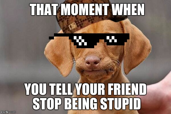That one moment | THAT MOMENT WHEN YOU TELL YOUR FRIEND STOP BEING STUPID | image tagged in wow | made w/ Imgflip meme maker