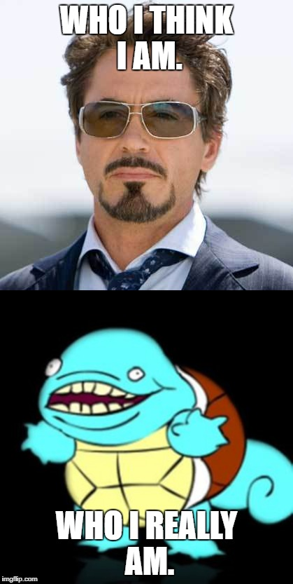 When Reality Kicks In |  WHO I THINK I AM. WHO I REALLY AM. | image tagged in squirtle,tony stark,funny | made w/ Imgflip meme maker