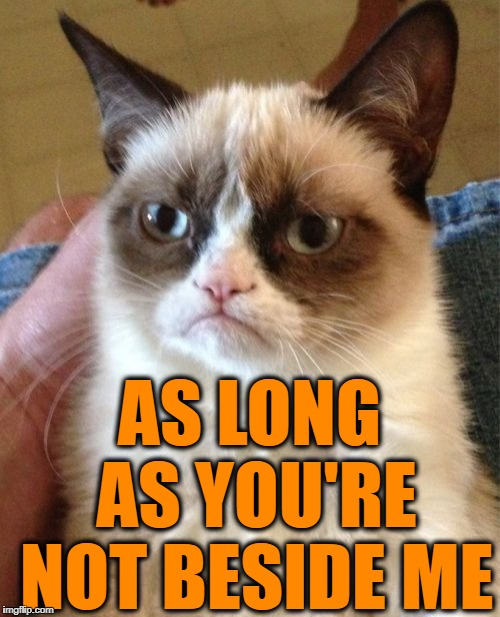 Grumpy Cat Meme | AS LONG AS YOU'RE NOT BESIDE ME | image tagged in memes,grumpy cat | made w/ Imgflip meme maker