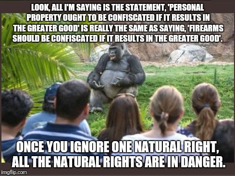 LOOK, ALL I'M SAYING IS THE STATEMENT, 'PERSONAL PROPERTY OUGHT TO BE CONFISCATED IF IT RESULTS IN THE GREATER GOOD' IS REALLY THE SAME AS S | image tagged in gorilla ted talk | made w/ Imgflip meme maker