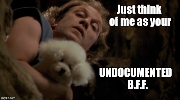 A Rose By Any Other Name | Just think of me as your UNDOCUMENTED  B.F.F. | image tagged in illegal immigration,buffalo bill silence of the lambs | made w/ Imgflip meme maker