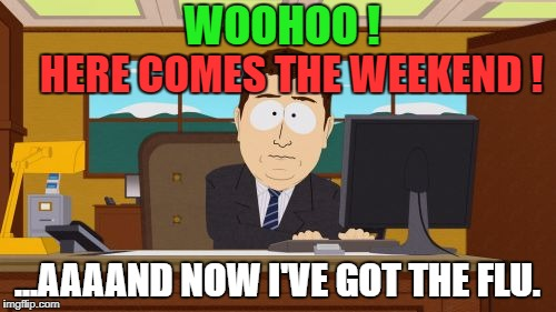 Aaaaand Its Gone Meme | HERE COMES THE WEEKEND ! ...AAAAND NOW I'VE GOT THE FLU. WOOHOO ! | image tagged in memes,aaaaand its gone | made w/ Imgflip meme maker