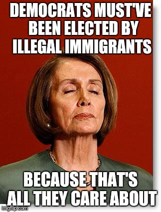 Blind Pelosi | DEMOCRATS MUST'VE  BEEN ELECTED BY ILLEGAL IMMIGRANTS BECAUSE THAT'S ALL THEY CARE ABOUT | image tagged in blind pelosi | made w/ Imgflip meme maker