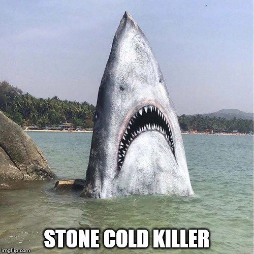 STONE COLD KILLER | made w/ Imgflip meme maker