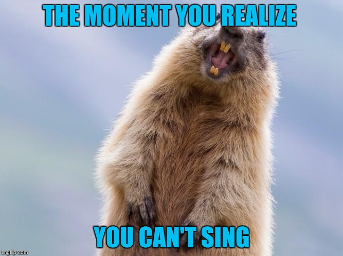 by the way gopher, you can't sing | THE MOMENT YOU REALIZE YOU CAN'T SING | image tagged in the moment you realize | made w/ Imgflip meme maker
