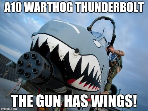 make the gun fly | A10 WARTHOG THUNDERBOLT THE GUN HAS WINGS! | image tagged in twitter | made w/ Imgflip meme maker