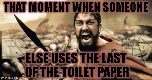 Sparta Leonidas Meme | THAT MOMENT WHEN SOMEONE ELSE USES THE LAST OF THE TOILET PAPER | image tagged in memes,sparta leonidas | made w/ Imgflip meme maker