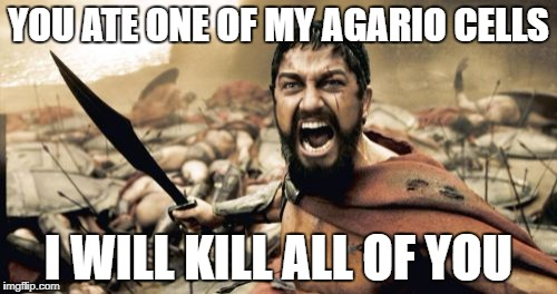 Sparta Leonidas Meme | YOU ATE ONE OF MY AGARIO CELLS I WILL KILL ALL OF YOU | image tagged in memes,sparta leonidas | made w/ Imgflip meme maker
