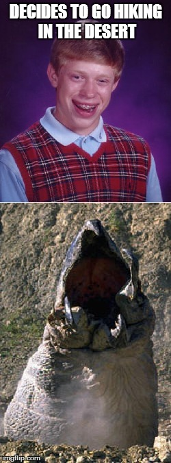 Bad Luck Brian | DECIDES TO GO HIKING IN THE DESERT | image tagged in bad luck brian,tremors | made w/ Imgflip meme maker
