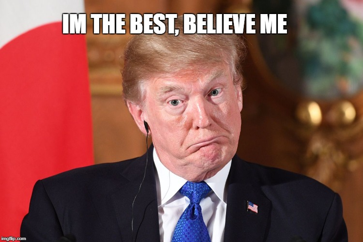 Trump dumbfounded | IM THE BEST, BELIEVE ME | image tagged in trump dumbfounded | made w/ Imgflip meme maker