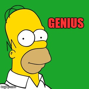 homer | GENIUS | image tagged in homer | made w/ Imgflip meme maker
