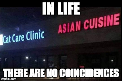 I think not. | IN LIFE THERE ARE NO COINCIDENCES | image tagged in coincidence,coincidence i think not,asian,cat,food | made w/ Imgflip meme maker