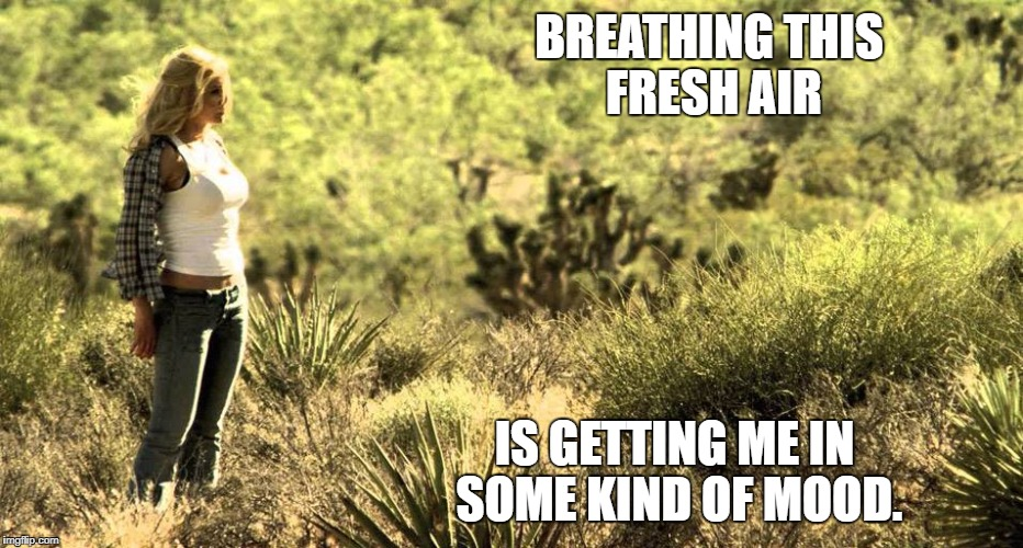BREATHING THIS FRESH AIR IS GETTING ME IN SOME KIND OF MOOD. | image tagged in cerina vincent | made w/ Imgflip meme maker