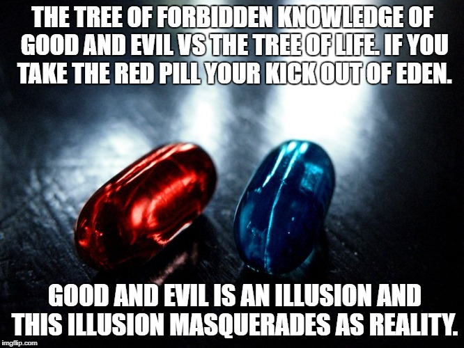 Tree of Knowledge vs Tree of Life. | THE TREE OF FORBIDDEN KNOWLEDGE OF GOOD AND EVIL VS THE TREE OF LIFE. IF YOU TAKE THE RED PILL YOUR KICK OUT OF EDEN. GOOD AND EVIL IS AN IL | image tagged in genesis | made w/ Imgflip meme maker