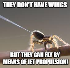 THEY DON'T HAVE WINGS BUT THEY CAN FLY BY MEANS OF JET PROPULSION! | made w/ Imgflip meme maker