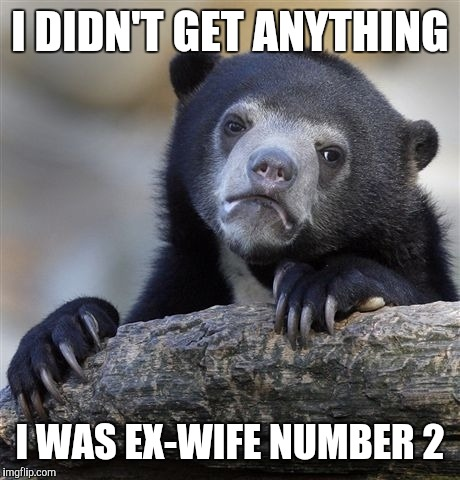 Confession Bear Meme | I DIDN'T GET ANYTHING I WAS EX-WIFE NUMBER 2 | image tagged in memes,confession bear | made w/ Imgflip meme maker