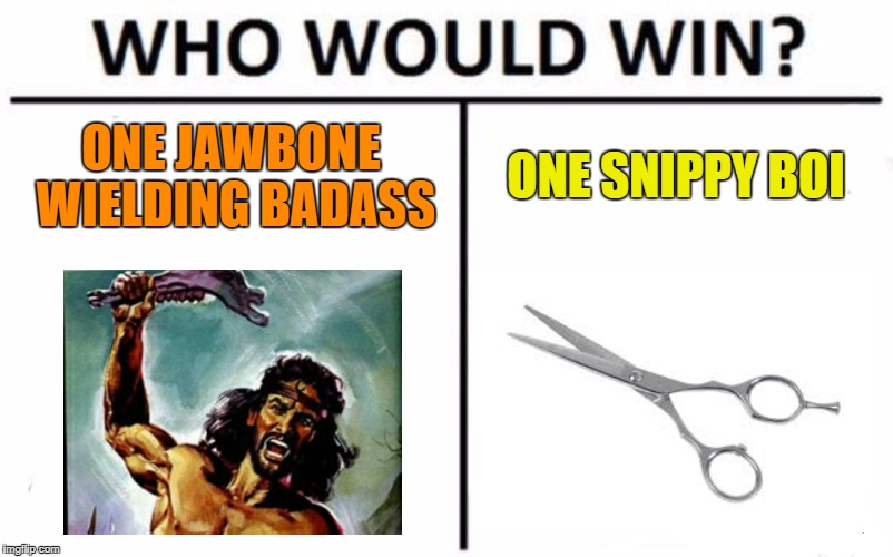 Who Would Win? Meme | ONE JAWBONE WIELDING BADASS ONE SNIPPY BOI | image tagged in memes,who would win | made w/ Imgflip meme maker