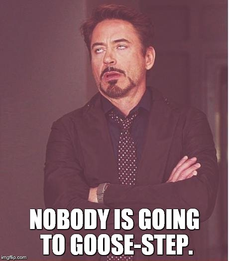 Face You Make Robert Downey Jr Meme | NOBODY IS GOING TO GOOSE-STEP. | image tagged in memes,face you make robert downey jr | made w/ Imgflip meme maker