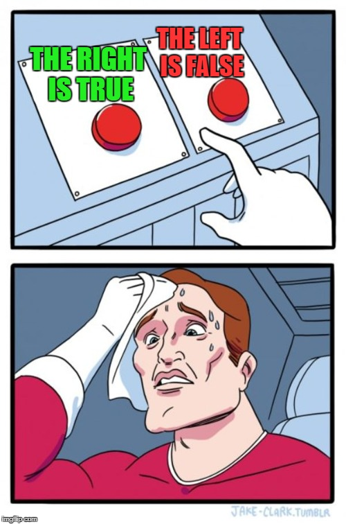 The hardest decision PERIOD! | THE RIGHT IS TRUE THE LEFT IS FALSE | image tagged in memes,two buttons,paradox,mindblown,hardest,decisions | made w/ Imgflip meme maker