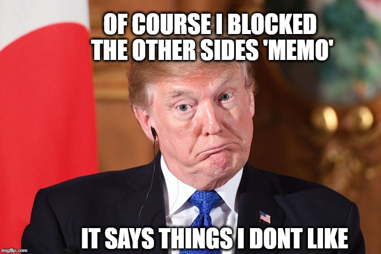 OF COURSE I BLOCKED THE OTHER SIDES 'MEMO' IT SAYS THINGS I DONT LIKE | image tagged in trump dumbfounded | made w/ Imgflip meme maker