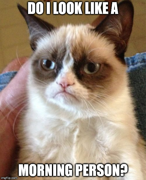 Grumpy Cat Meme | DO I LOOK LIKE A MORNING PERSON? | image tagged in memes,grumpy cat | made w/ Imgflip meme maker