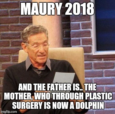 Maury Lie Detector Meme | MAURY 2018 AND THE FATHER IS.. THE MOTHER, WHO THROUGH PLASTIC SURGERY IS NOW A DOLPHIN | image tagged in memes,maury lie detector | made w/ Imgflip meme maker