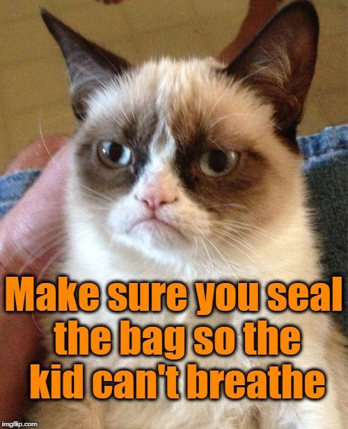 Grumpy Cat Meme | Make sure you seal the bag so the kid can't breathe | image tagged in memes,grumpy cat | made w/ Imgflip meme maker