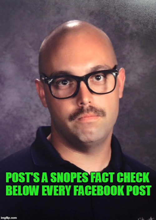 People try to make their opinions facts  and try to make your opinions false. | POST'S A SNOPES FACT CHECK BELOW EVERY FACEBOOK POST | image tagged in fact check | made w/ Imgflip meme maker