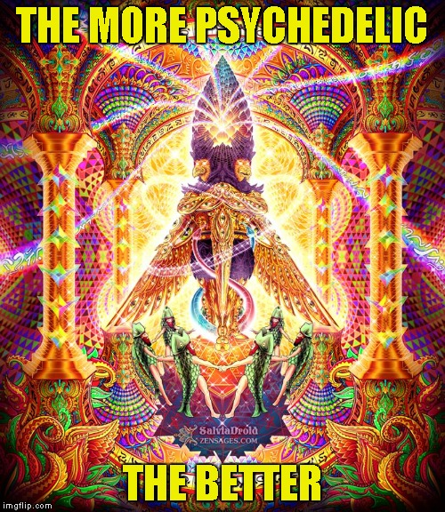 THE MORE PSYCHEDELIC THE BETTER | made w/ Imgflip meme maker