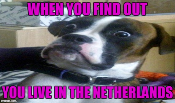 WHEN YOU FIND OUT YOU LIVE IN THE NETHERLANDS | made w/ Imgflip meme maker