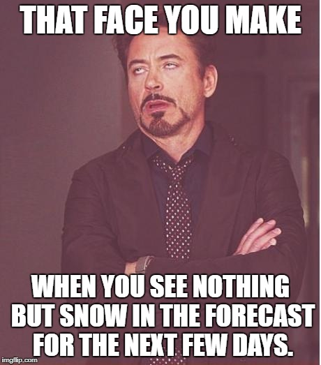 Face You Make Robert Downey Jr Meme | THAT FACE YOU MAKE WHEN YOU SEE NOTHING BUT SNOW IN THE FORECAST FOR THE NEXT FEW DAYS. | image tagged in memes,face you make robert downey jr | made w/ Imgflip meme maker