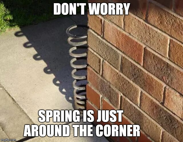 DON'T WORRY SPRING IS JUST AROUND THE CORNER | image tagged in memes,spring | made w/ Imgflip meme maker