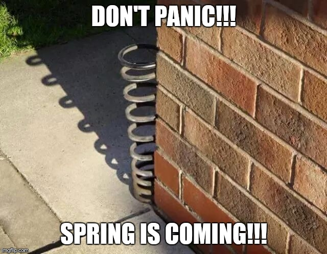 DON'T PANIC!!! SPRING IS COMING!!! | image tagged in spring,memes | made w/ Imgflip meme maker