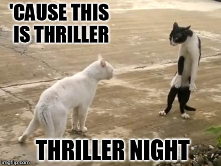 'CAUSE THIS IS THRILLER THRILLER NIGHT | made w/ Imgflip meme maker