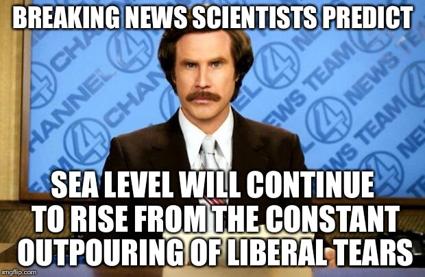 BREAKING NEWS | BREAKING NEWS SCIENTISTS PREDICT SEA LEVEL WILL CONTINUE TO RISE FROM THE CONSTANT OUTPOURING OF LIBERAL TEARS | image tagged in breaking news,memes | made w/ Imgflip meme maker