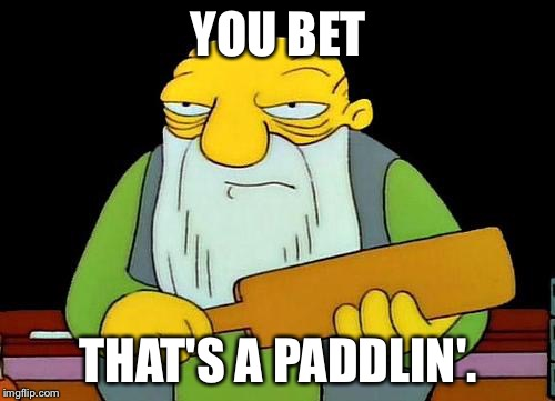 YOU BET THAT'S A PADDLIN'. | made w/ Imgflip meme maker