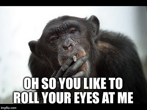 OH SO YOU LIKE TO ROLL YOUR EYES AT ME | made w/ Imgflip meme maker