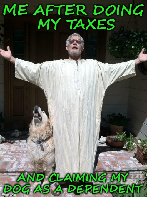 Tax resurrection  | ME AFTER DOING MY TAXES AND CLAIMING MY DOG AS A DEPENDENT | image tagged in taxes,tax refund,dogs,gods,memes,funny | made w/ Imgflip meme maker