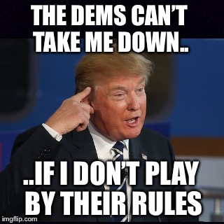 Roll safe and think about it | THE DEMS CAN'T TAKE ME DOWN.. ..IF I DON'T PLAY BY THEIR RULES | image tagged in roll safe think about it,donald trump | made w/ Imgflip meme maker