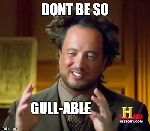 Ancient Aliens Meme | DONT BE SO GULL-ABLE | image tagged in memes,ancient aliens | made w/ Imgflip meme maker