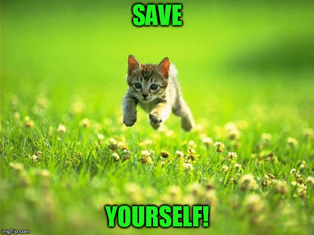 SAVE YOURSELF! | made w/ Imgflip meme maker