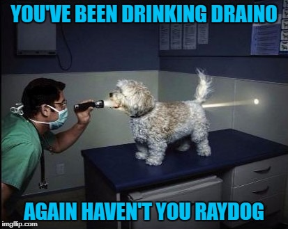 YOU'VE BEEN DRINKING DRAINO AGAIN HAVEN'T YOU RAYDOG | made w/ Imgflip meme maker