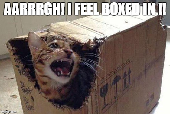 AARRRGH! I FEEL BOXED IN !! | made w/ Imgflip meme maker