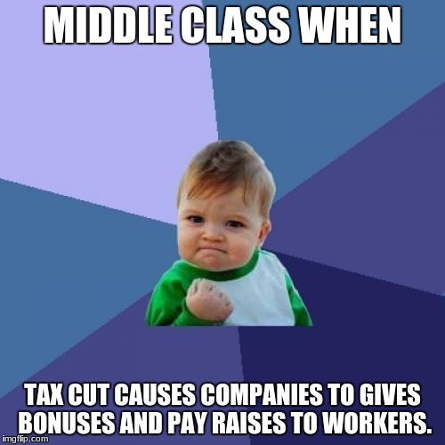What the middle class got from tax cuts. | MIDDLE CLASS WHEN TAX CUT CAUSES COMPANIES TO GIVES BONUSES AND PAY RAISES TO WORKERS. | image tagged in memes,success kid,tax cuts,middle class | made w/ Imgflip meme maker