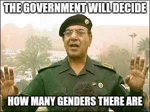 Baghdad Bob | THE GOVERNMENT WILL DECIDE HOW MANY GENDERS THERE ARE | image tagged in baghdad bob | made w/ Imgflip meme maker